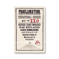 Прокламация №119