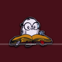 Пин Сова с книгой